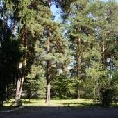 Малаховка, участок 40 сот. - продажа
