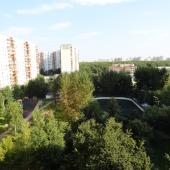 Вид из окна на зеленый двор