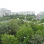 Вид из окон - на зеленый двор