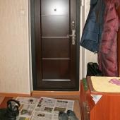 Есть вот такая шикарная дверь входная