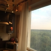 Такой вид открывается из окна кухни на ул. академика Капицы, 32к1