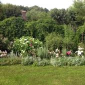 Новые фотографии цветов у этого дома в Сальково
