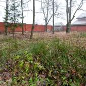 Ограда участка