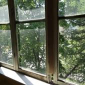 На всякий случай - вид из окна