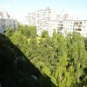 Вид из квартиры открывается на шикарный зеленый двор