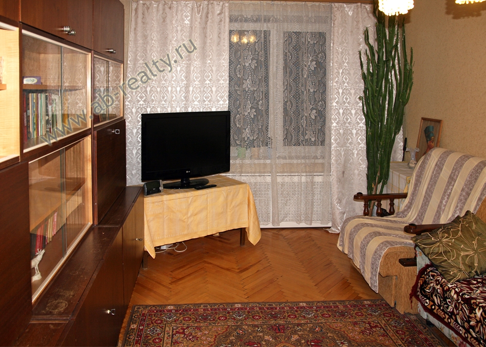 Основная комната с телевизором и диваном