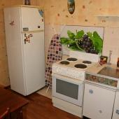 И под конец подтверждение наличия на кухне холодильника