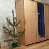 Вот на фотографии вы можете видеть в жилой комнате большой платяной шкаф