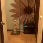 Это такой шкаф-купе с зеркальными дверями в виде цветов
