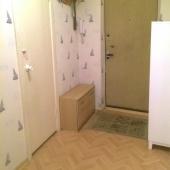 Дверь ведущая на лестничную клетку и часть прихожей