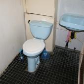 Но пользоваться туалетом очень даже можно!