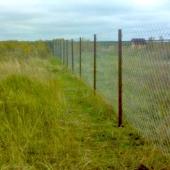 Огорожена земля вот такой сеткой или заборчиком