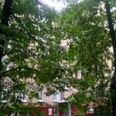 Тихий сталинский двор с оградой - И. Бабушкина 13к1, Москва - продажа 1-комнатной квартиры