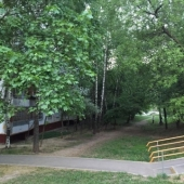 Зелени присутствует много около дома