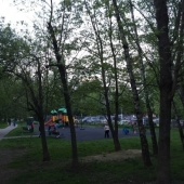 Вокруг деревья и прочая зелень летом на Введенского 20к2
