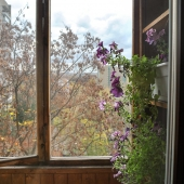 Вот, цветы даже на балконе квартиры по адресу Багрицкого 22 растут