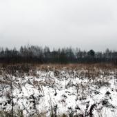 Участок как поле, рядом лес. Площадь - 15.71 га