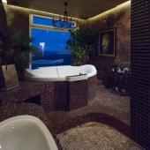 Рядом с ванной окно на лесной массив Тёплого Стана